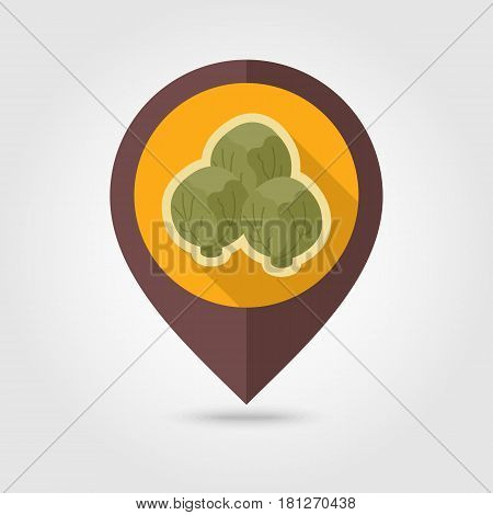 Brussels sprouts flat vector pin map icon. Map pointer. Map markers. Vegetable vector illustration