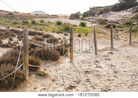 Wooden posts with barbed wire in nature