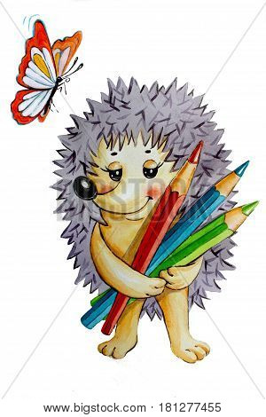Illustration on white background paper prickly hedgehog with color pencils in hands and a butterfly