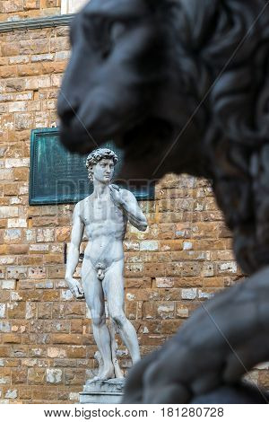Statue of Michelangelo's David in front of the Palazzo Vecchio. Statue of a lion in the foreground. Florence, Italy.