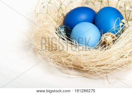 Easter eggs in blue colors in a nest. The place for the text. The concept of stylish decoration for Easter greeting cards etc. Flat lay