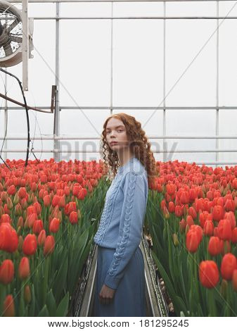 Portrait of pretty girl standing between two rows of red tulips in orangery