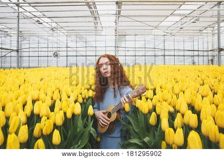 While girl in orangery standing between yellow tulips and playing guitar she looking camera