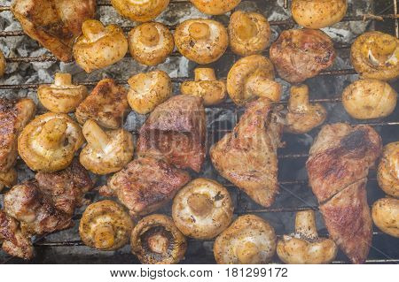 Pork meat cooking with field mushrooms outdoor on smouldering carbons