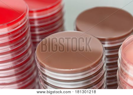 Red and brown petri dishes stacks in microbiology lab. Focus on stacks. Medical research