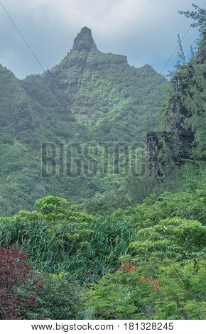 Pointy at the Top: lush landscape, pointy mountain top, on a cloudy day, at the Limahuli Garden and Preserve-National Botanical Garden, Ha'ena, Halele'a, Kauai, Hawaii, on March 24, 2017, mid-morning