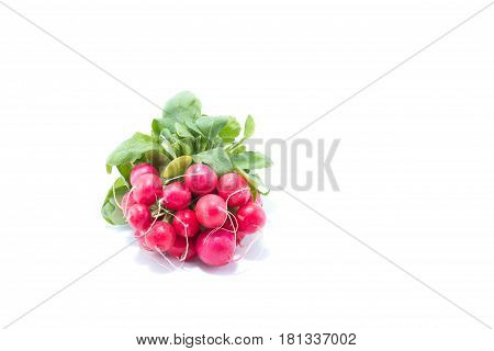 Red Radish With Green Leaves Isolated In White Background