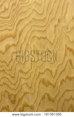 This is a closeup photograph of a Wood grain pattern background