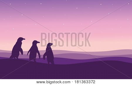 Silhouette of penguin on the hill scenery vector illustration