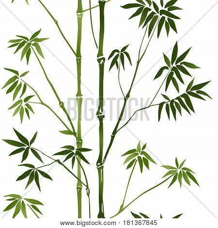 Bamboo Seamless Pattern on white background. Tropical wallpaper, nature textile print, template with text place. Vector watercolor stylization.