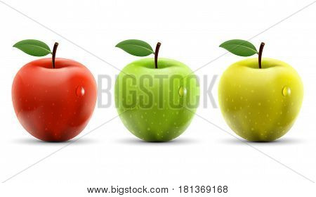 Set of red yellow and green apples isolated on white background. Stock vector illustration.