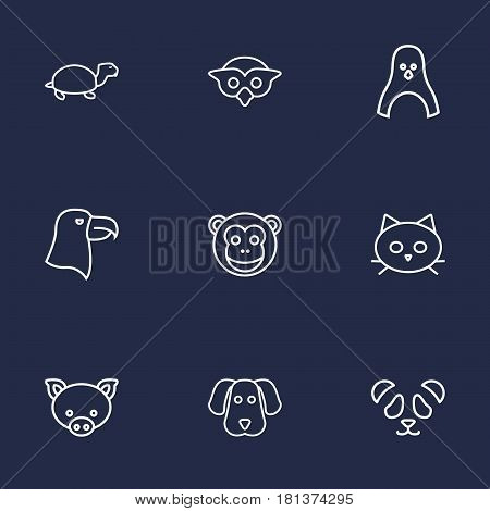 Set Of 9 Brute Outline Icons Set.Collection Of Cat, Eagle, Monkey And Other Elements.