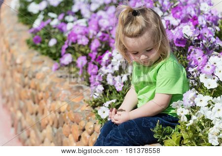 Cute Baby Boy Playing At Flowerbed With Blossoming Flowers