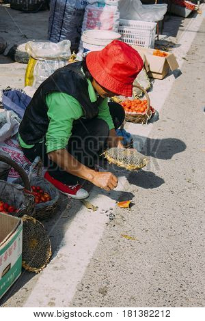 17,Oct,2014 -In Beijing China.A Chinese women was takeing out sunflowers seeds by hand in market