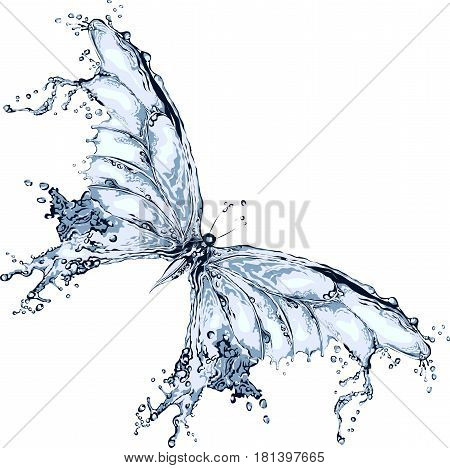 Water splash butterfly on a white background