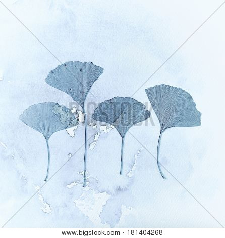Gingko leaves with watercolor texture