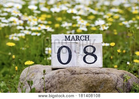 Daisies in nature March 8th wooden calendar Concept
