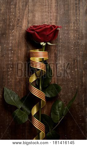 a red rose and a catalan flag on a rustic wooden surface for Sant Jordi, the Catalan name for Saint Georges Day, when it is tradition to give red roses to women in Catalonia, Spain