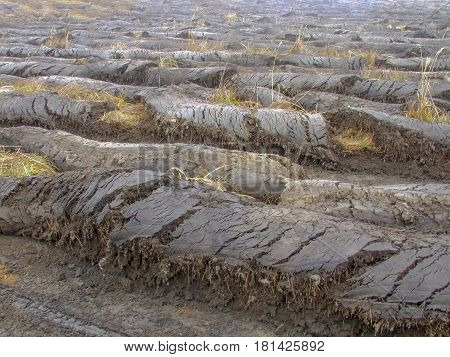 Furrows Of The Earth
