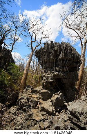 Tsingy Rock Formations In Ankarana, Madagascar Wilderness