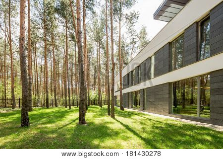Modern House Surrounded By Trees