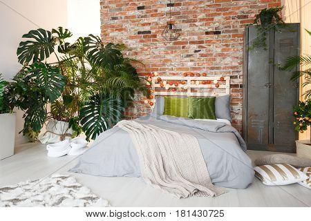 Bed, Locker And Monstera