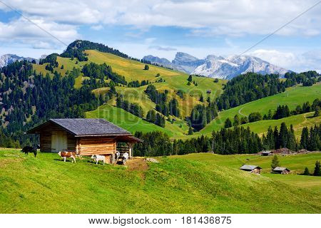 Seiser Alm, The Largest High Altitude Alpine Meadow In Europe, Stunning Rocky Mountains On The Backg