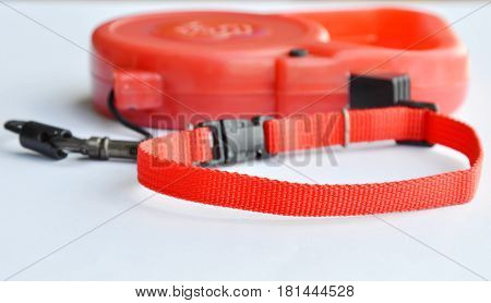 automatic leash and red nylon dog collar on white background