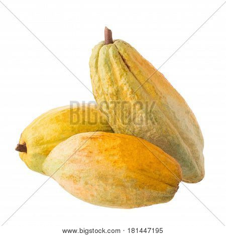 Cacao fruit raw cacao beans Cocoa pod on white background.