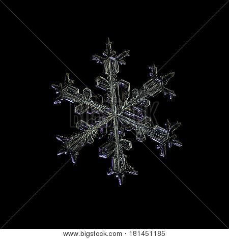Macro photo of real snowflake: large snow crystal of stellar dendrite type with long, elegant arms glittering on black background.
