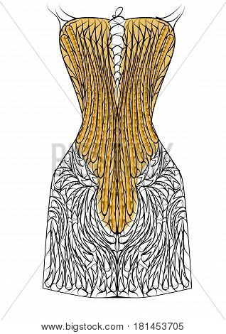 corset isolated on white background. 10 EPS