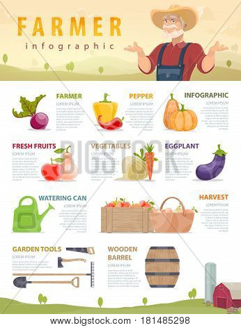 Farm and agriculture infographic concept with vegetables fruits manual labor tools wooden crate and barrel vector illustration