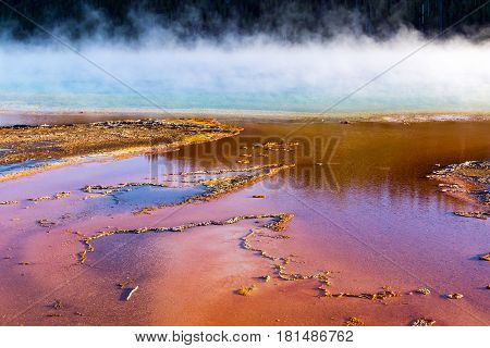 Steam rising from the colorful Grand Prismatic Spring in Yellowstone National Park in Wyoming