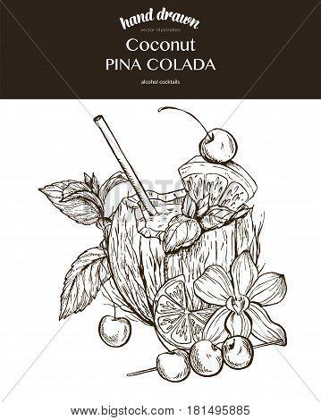 Coconut Pina Colada.  Composition. Vector sketch illustration of cocktails. Hand drawn.