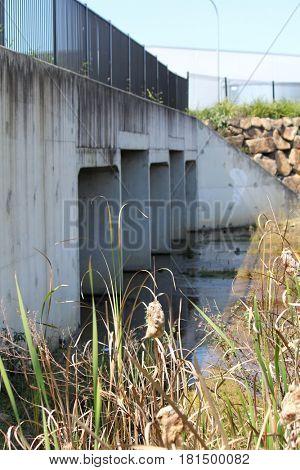 Drainage area under bridge
