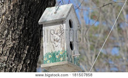 bird house tree hanging  white  bark hole