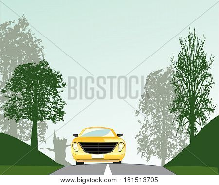 Matutinal wood and asphalt road with car on her