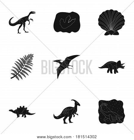 Ancient extinct animals and their tracks and remains. Dinosaurs, tyrannosaurs, pnictosaurs.Dinisaurs and prehistorical icon in set collection on black style vector symbol stock web illustration. poster