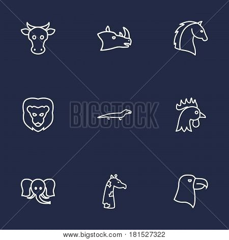 Set Of 9 Brute Outline Icons Set.Collection Of Horse, Giraffe, Cock And Other Elements.