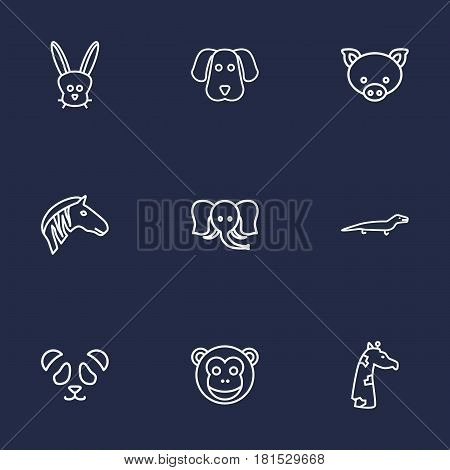Set Of 9 Beast Outline Icons Set.Collection Of Feline Bear, Mammal, Monkey And Other Elements.