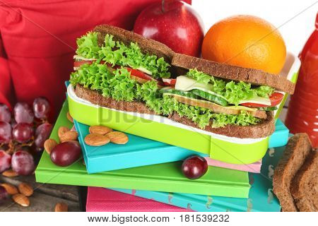 Meal for schoolchild in lunch box, closeup