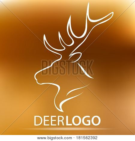 Vector Lion head logo for your design. Stock vector illustration
