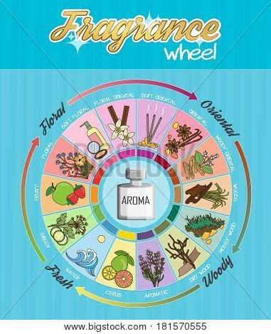Aromatic guide wheel for perfume, scent and aroma infographic poster. Oriental, woody, fresh and flower essenses chart with examples of popular aroma notes.
