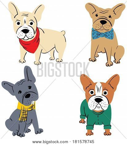 Cartoon vector character french bulldog isolated on white background. Funny puppies in cute clothes.