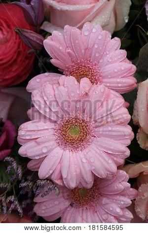Big pink gerbers in a mixed floral arrangement