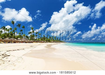 Beautiful tropical white beach and coconut palm trees. Holiday and vacation concept.