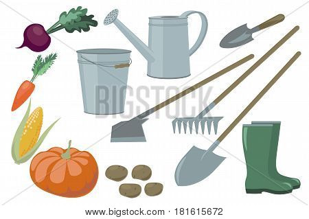 Farm Garden Inventory Set Items Elements And Vegetables Harvest Yield. Beets Carrots Corn Pumpkin Po