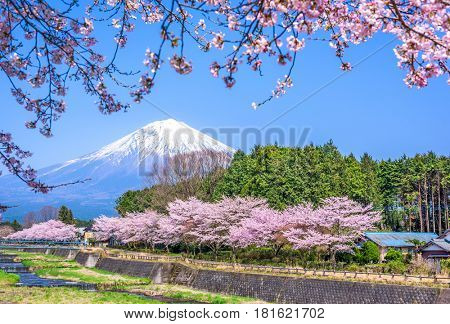 Shizuoka, Japan at Mt. Fuji in spring.