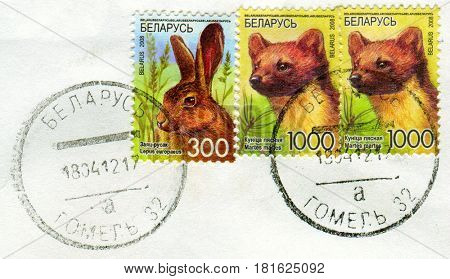 GOMEL, BELARUS, APRIL 10, 2017. Stamp printed in Belarus shows image of  The Lepus europaeus and Martes martes, circa 2008.