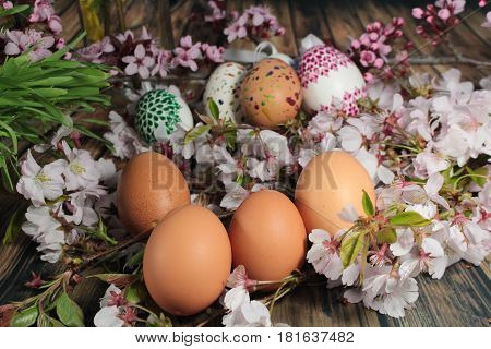 Painted Easter eggs and grass with cherry branch/ Easter eggs and cherry branch.